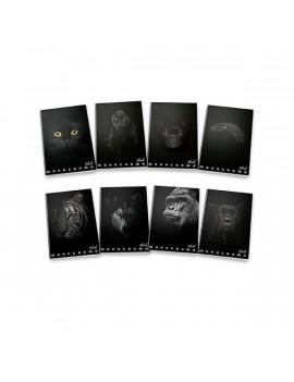 Pigna Monocromo Black A4 38lapos kockás füzet